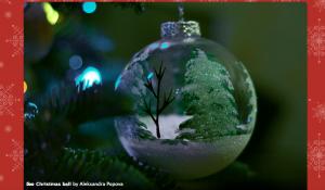 Captura de pantalla 2014-12-15 a las 11.28.59